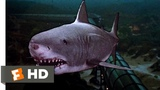 Jaws 3-D (99) Movie CLIP - The Exploding Shark (1983) HD