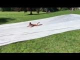 DIY Slip and Slides Funny Fails Compilation