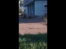 Выбрасывает мусор возле кинотеатра Октябрь Мелеуз mp4