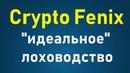 Crypto Fenix company Крипто феникс Артур Шолохов идеальный лидер