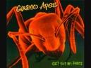 Guano Apes - Big in Japan (Lyrics)