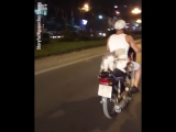 Котики на мотоцикле