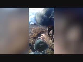 Очевидцы вычерпывали спирт ведрами на месте ДТП со спиртовозом
