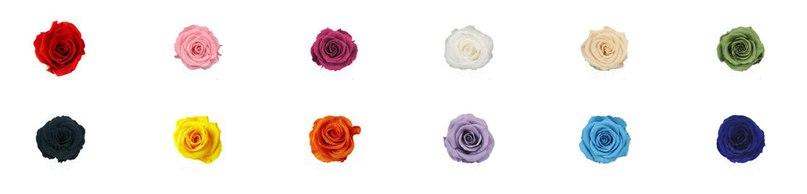 Цвет и размер роз в колбе