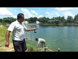Nice Fishing Videos By Using Fishing Rod And Fish Hooks