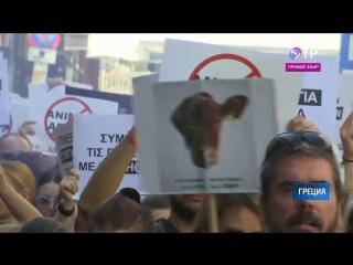 Марш в защиту прав животных провели в центре Афин Новости ОТР