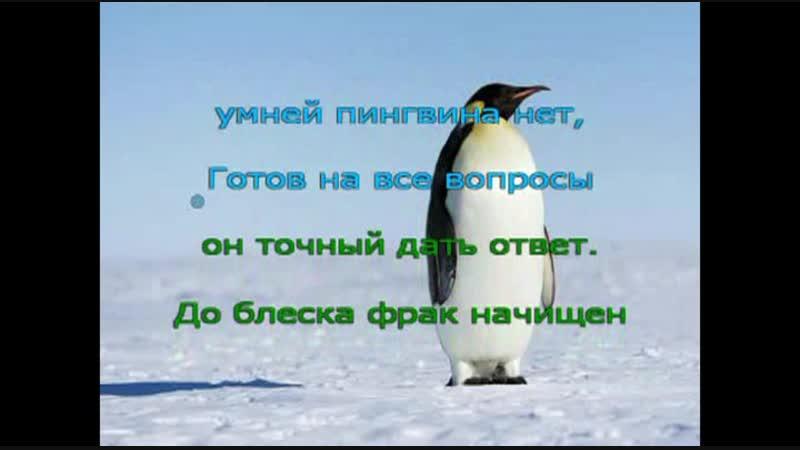 Онлайн -Марафон Поем с мамой. День 2. Пингвин 2 куплет и припев