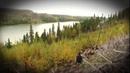 Охота с луком на лося во время гона на севере Онтарио. Охота в Новом Свете. Выпуск 110.