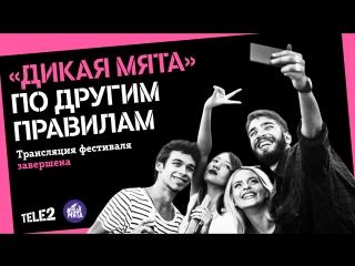 Прямая трансляция фестиваля «Дикая мята»