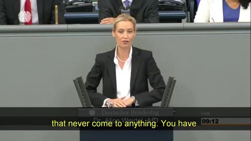 AfD's Dr Weidel sætter Merkel på plads