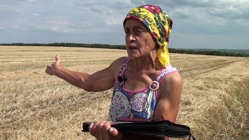 Рейдерский захват урожая УкрЗерноТрейд