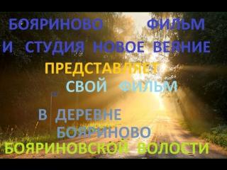 В ДЕРЕВНЕ БОЯРИНОВО БОЯРИНОВСКОЙ ВОЛОСТИ