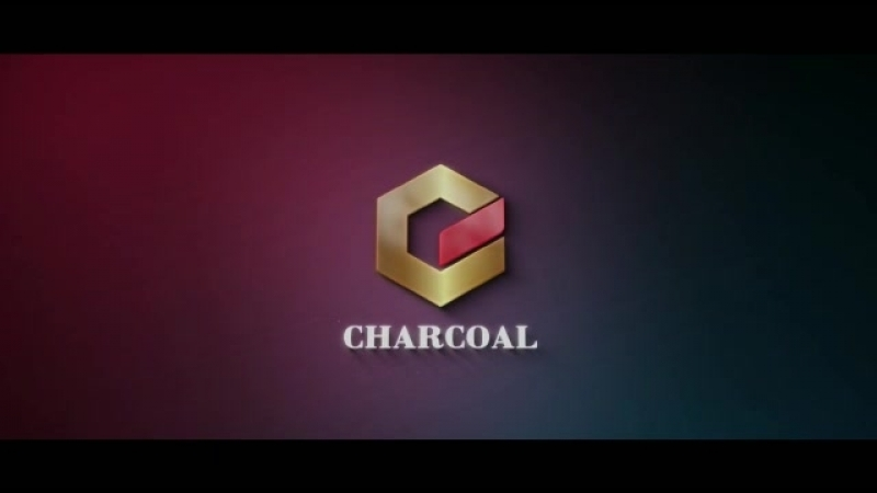 CHARCOAL BBQ BRIQUETTES