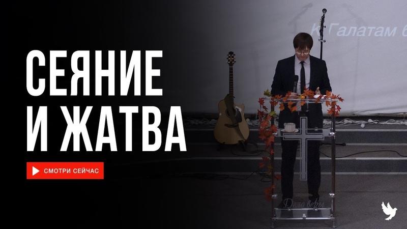 Виталий Хайдуков Сеяние и жатва