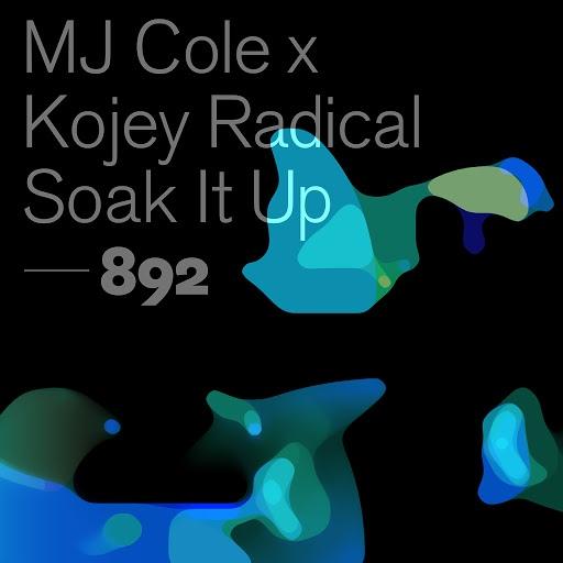 Mj Cole альбом Soak It Up