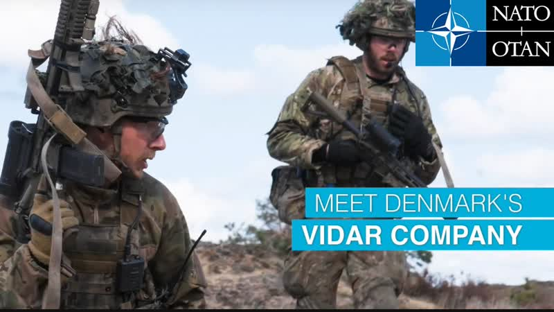 Датський підрозділ НАТО VIDAR