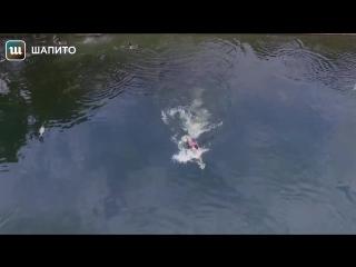 Дрон снял, как владелец спасет его от падения в воду