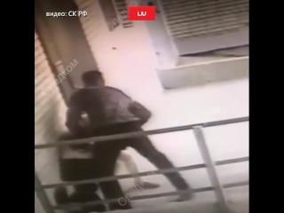 пес спас хозяйку от убийцы с ножом - Это Ростов-на-Дону!