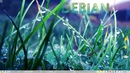 Debian GNU/Linux фото #6