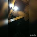 ded_sanya_qqq video