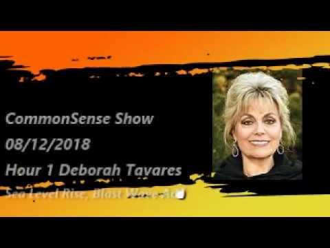 Sea Level Rise, Blast Wave Accelerators and More Deborah Tavares