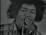 Jimmy Hendrix Wild Thing Cosa salvaje subtitulada espa