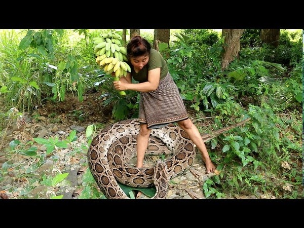 Primitive Technology - Finding Snake By Girl in forest - Cooking Snake Eating delicious 82