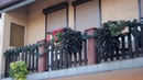 Exclusive House, 10 apartments, office, parking, 6.7 km Wroclaw city center