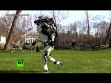 Беги, робот, беги: инженеры отправили робота на пробежку