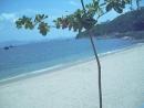 Cheng Chau Island