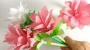 【コピー用紙】クルクマ 【Paper Flower】Siam tulip Curcuma