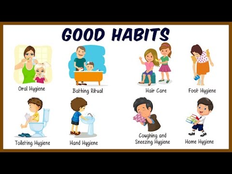 Daily Activities For Kids | Good Habits And Manners For Kids | Preschool Learning For Kids