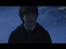 Гарри Поттер в России