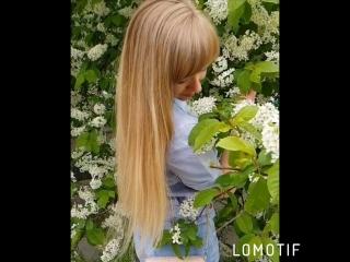 Черемухи цвет