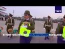 Щенки на службе чилийской полиции