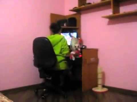 Чем занимаются парни когда их девушки сидят за компьютером