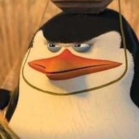 kolja.aksai avatar