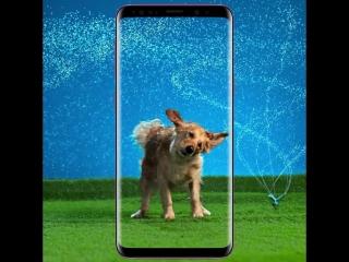 С Galaxy S9 | S9+ ты точно не упустишь момент!