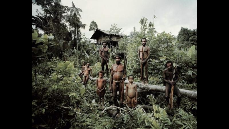 Mark Plotkin Что знают жители Амазонии и не знаем мы