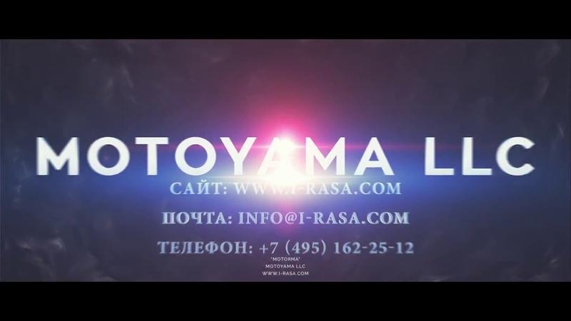 Боевые искусства: обзорный ролик от центра МОТОЯМА