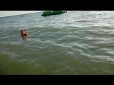 Черное море в Сочи Лоо