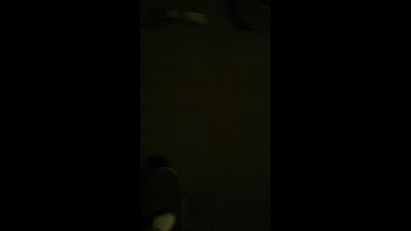 Катаем на лонгбордах