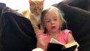 Little Girls 👧Loves Her Cat 🐱More Than Anything 😊赤ちゃん愛の猫