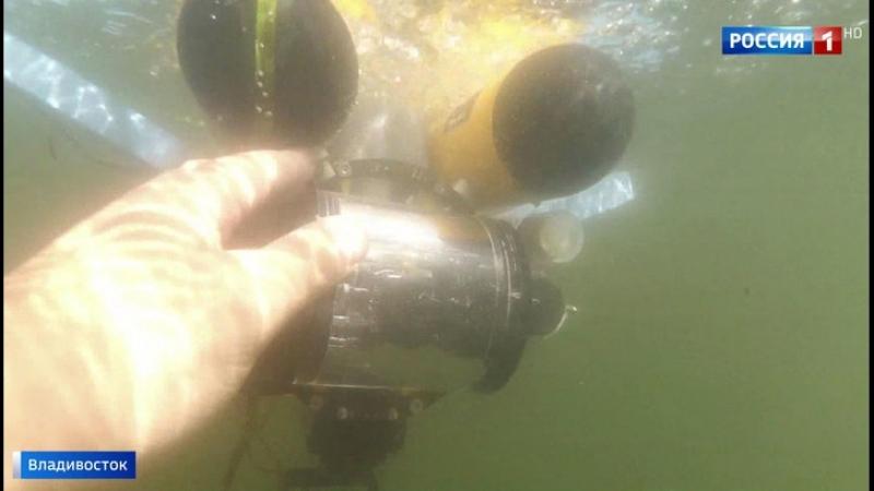 Во Владивостоке стартовали Всероссийские соревнования подводных роботов