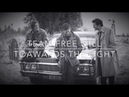 Team Free Will || Towards The Light