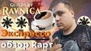 Экспресс-обзор белых карт Гильдий Равники от Евгения Щётки Magic: The Gathering Ravnica Card REview