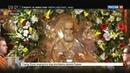 Новости на Россия 24 • Мощи Николая Чудотворца в Москве встречали тысячи верующих