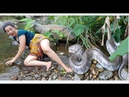 Survival skills Find big snake in water wildboiled snake in clay for food cooking eating delicious