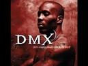 DMX Ain't No Sunshine