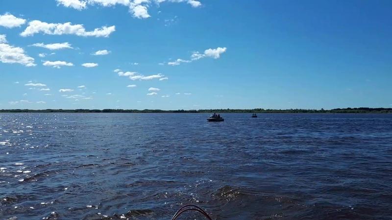 Экстримальный заплыв через Обь Перегребное ЛПУМГ 2018